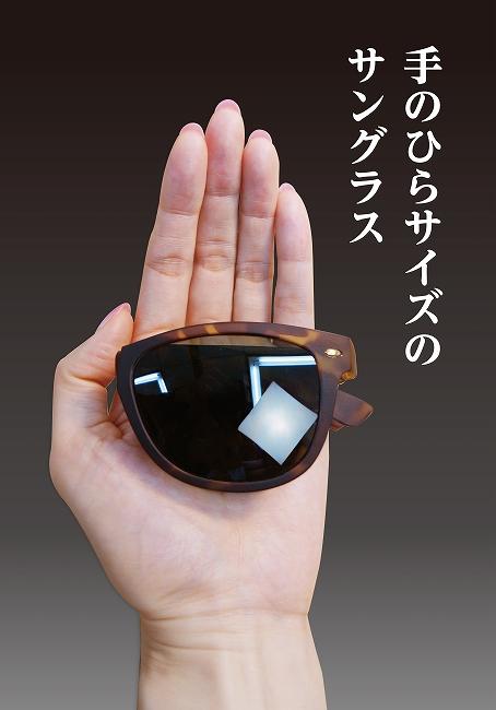 手のひらサイズのサングラス